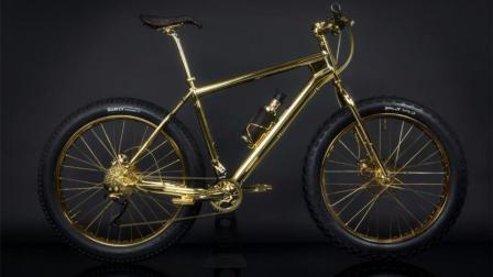世界最贵自行车, 售价600万, 谁敢碰瓷谁倒霉!