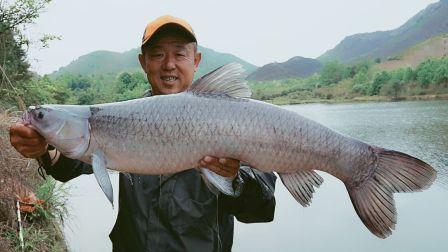《游钓中国》第三季第3集  重游故地江西抚州  高难坑库一口难求