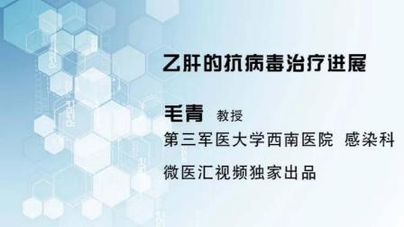 毛青教授讲解 乙肝的抗病毒治疗