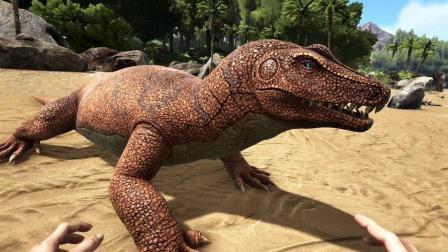 【肉肉】方舟: 恐龙1401远古大蜥蜴!