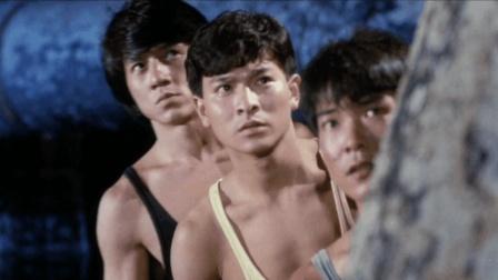 想当年, 成龙、华仔和元彪还在洪金宝的戏里当配角
