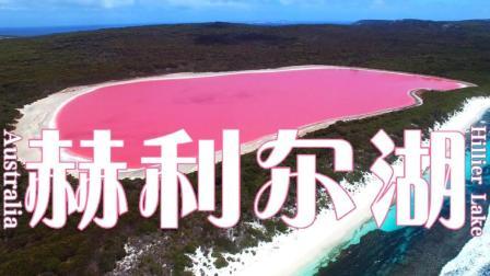 澳大利亚——赫利尔湖粉色天使Hillier Lake☆航拍中国★旅行遇见☆