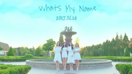 T-ara《Whats my name》舞蹈镜面分解教学【TS DANCE】