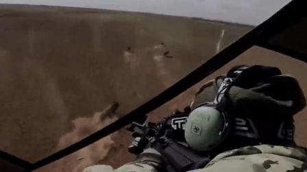 国外牛人开直升飞机打猎野猪, 少说也收获了50头