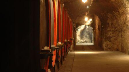 德国葡萄酒系列 - 我不是王蓉,我不会气功