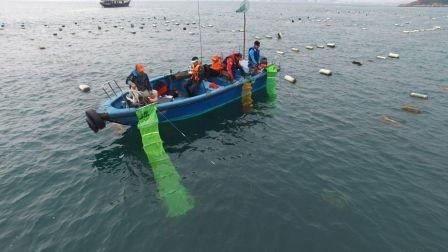 《游钓中国》第三季第4集 硬搏巨物不如四处猎奇 手竿出海也能钓起频率
