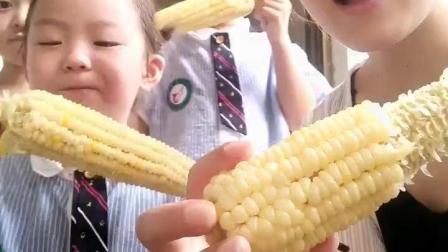 大毛小吃货: 幼儿园老师和学生一起狂吃煮的玉米!