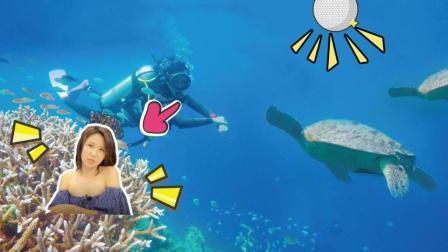 美女仙本那潜水 深海27米 与海龟共舞 68