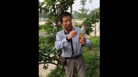 乡村生物教师发明的杀虫神器, 不需要农药, 让你吃上绿色健康食品