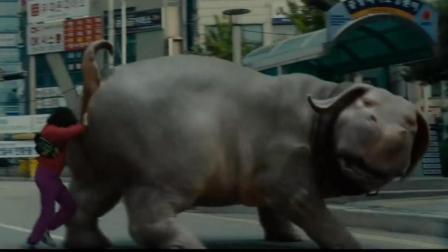 一只大萌宠跑到闹市区的结果  求电影名