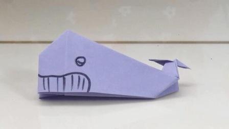 小鲸鱼 05