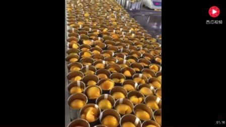 实拍黄桃罐头加工厂制作罐头的过程, 原来黄桃罐头是这么做出来的, 好简单