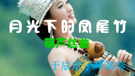 葫芦丝曲  月光下的凤尾竹