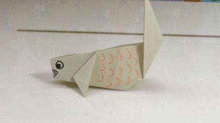 小鲤鱼 06