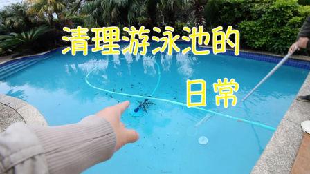 清理游泳池的日常(新西兰 Harold Vlog 226)