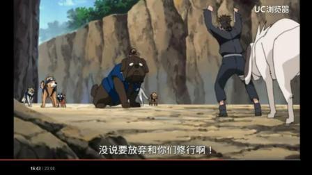 火影忍者: 牙被卡卡西的忍犬气的精神崩溃, 就差吃狗肉了