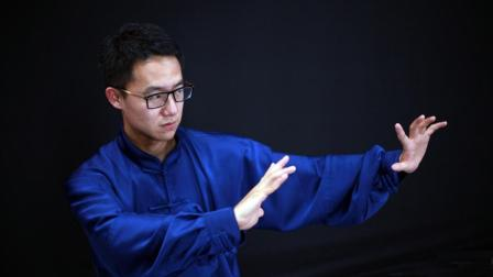 第35课-退步跨虎(杨大卫讲解传统杨氏太极拳)