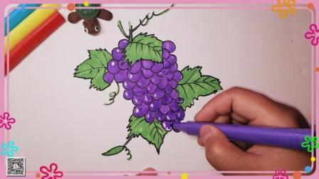 葡萄简笔画 水果简笔画 简笔画教程