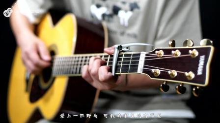 《董小姐》吉他弹唱教学——小磊吉他教室出品