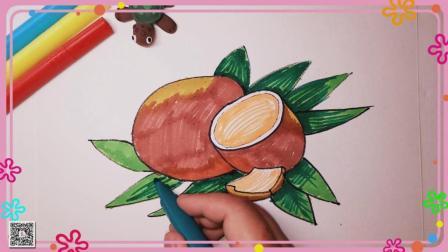 椰子简笔画 水果简笔画 简笔画教程