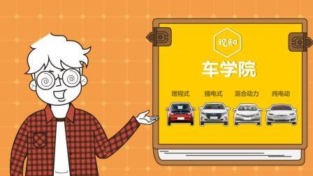 纯电动车和不纯的电动车 到底有啥区别 61