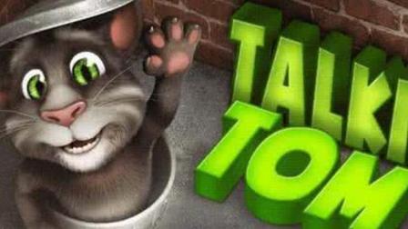 我的会说话的汤姆 可爱的汤姆猫