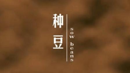 河中医首部微电影种豆_高清