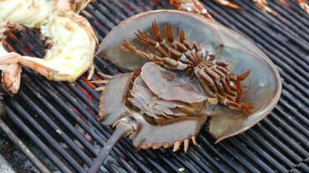 美食: 海鲜鲎的做法, 你吃过吗?