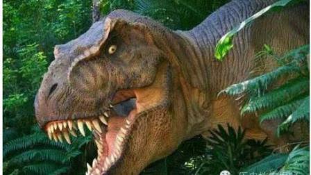 侏罗纪恐龙世界动画片 觉醒的霸王龙2 恐龙总动员 恐龙当家国语版