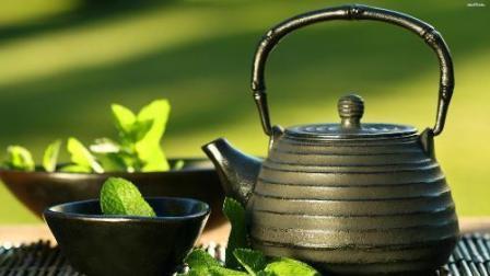 《茶叶起源一二三》的名词解释