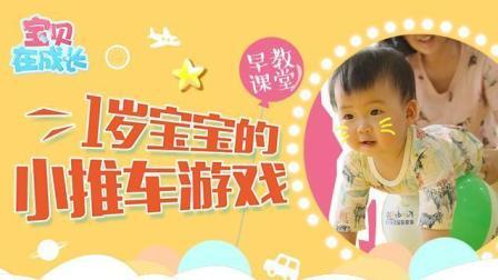 早教课堂: 适合1岁小宝宝的小推车游戏, 增强力量很重要!