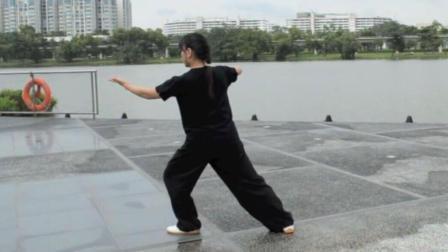 四十二式太极拳整套示范