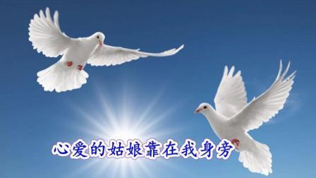 世界名曲《鸽子》——胡里奥原唱经典, 一