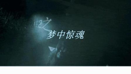 鸭王梦中惊魂