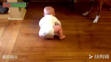 宝宝看见狗狗吃掉了自己的曲奇饼干伤心的哭起来了!