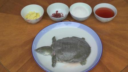 农村大爷抓了个4斤重的野生甲鱼, 被农家乐老板500元买走, 烧成枸杞甲鱼汤!