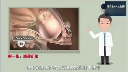 孕妈分娩时胎儿在干嘛? 看完心都萌化了