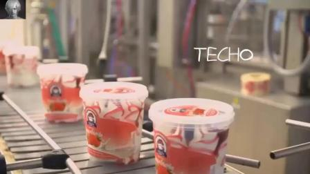 参观冰激凌工厂 冰激凌的生产过程