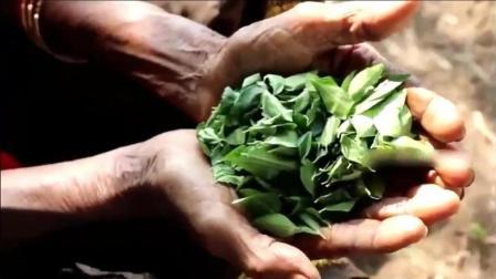 印度网红老奶奶, 给家里雇来的干农活的工人做饭, 大家都爱吃!