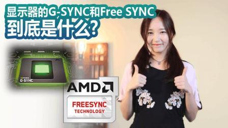 显示器的G-SYNC和Free SYNC到底是什么? 【尬聊百科】