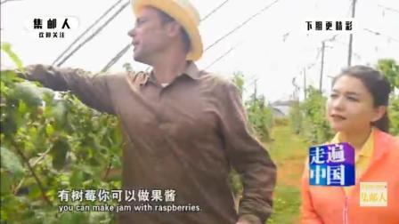 法国人来到云南当农民, 种植树莓用特殊方法来杀虫