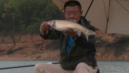 《游钓中国》第三季第10集 客家古邑万绿河源 孤身手竿雨战底物
