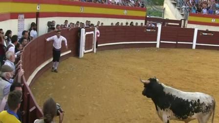 屌爆了! 西班牙斗牛节最愚蠢的公牛 刚出场就毙命了!
