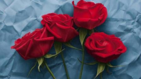红玫瑰与白玫瑰|得不到的永远在骚动, 被偏爱的都有恃无恐