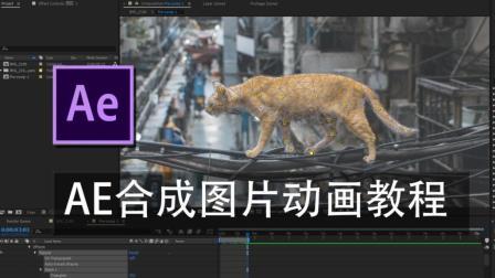 【教程】如何在AE中给图片做动画