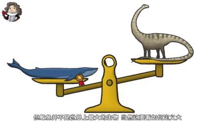 世界上最大的生物是什么? 科学家经过调研发现不是鲸鱼, 而是它们
