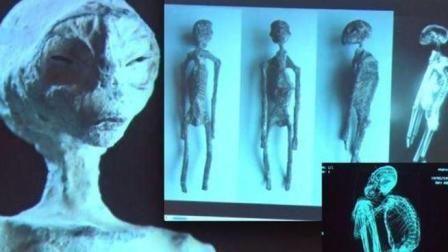秘鲁发现外星人木乃伊