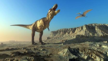 恐龙世界 第22期 霸王火龙和小土龙的恐龙觅食07 侏罗纪公园 亲子游戏