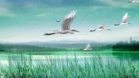 歌曲《候鸟》