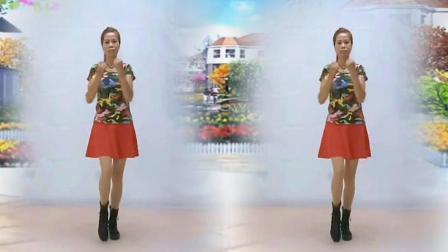 糖豆广场舞课堂 第二季 武汉星月广场舞相伴一生,广场舞16步入门舞原创舞蹈